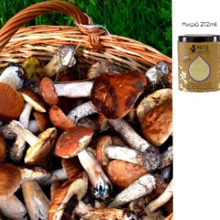 Άγρια Μανιτάρια Αποξηραμένα σε Πόυδρα Ελλάδος | Nuts Collection